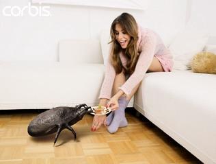 Woman Feeding Pet Mite